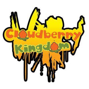 Cloudberry Kingdom - wersja cyfrowa