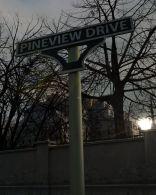 Pineview Drive - wersja cyfrowa